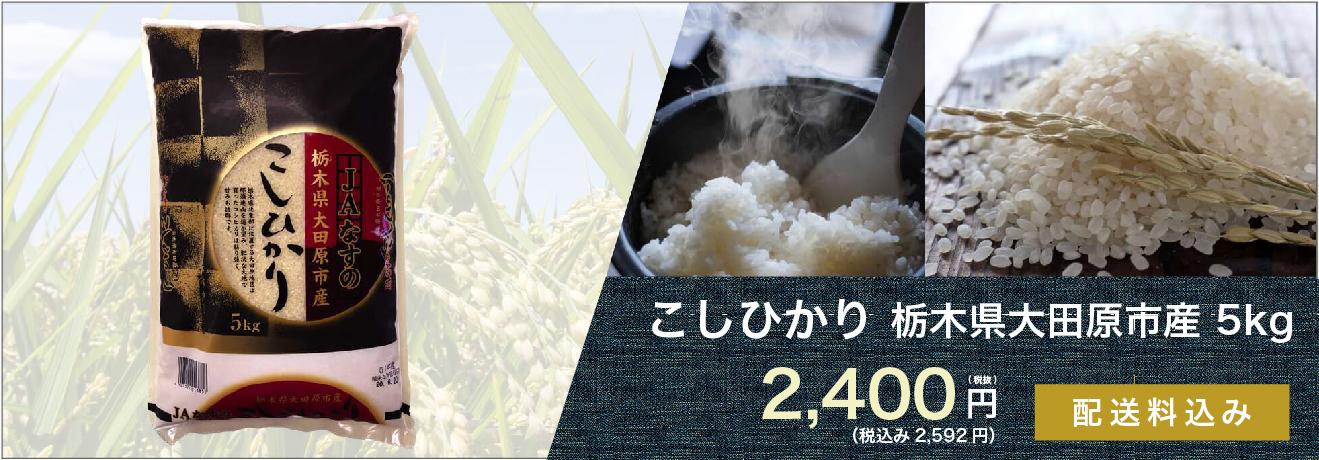 こしひかり 栃木県大田原市産 5kg 2,400円(税込)送料込み